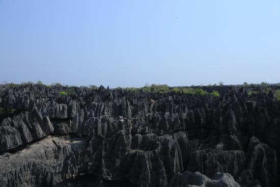 Tsingy de Bemaraha Strict Nature Reserve: Big tsingy