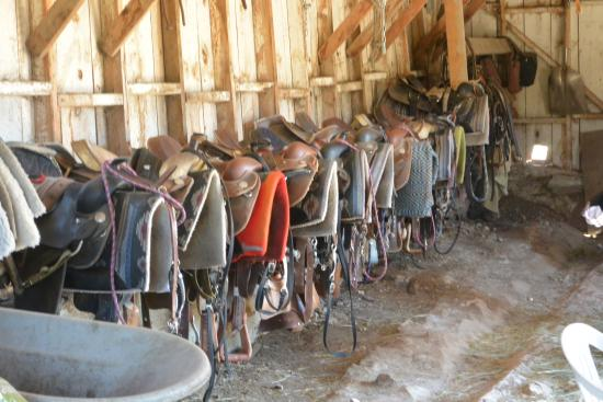 Tack Room at High Country Guest Ranch