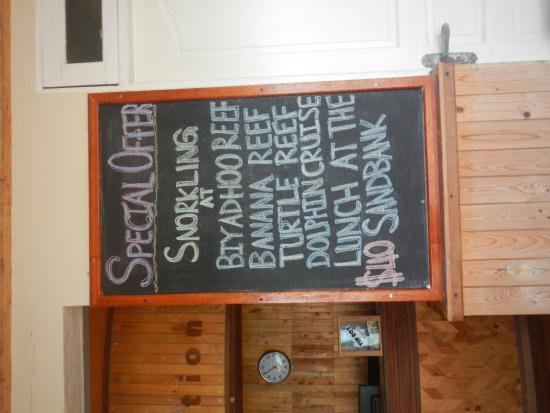 WhiteShell Beach Inn: The snorkelling package they have provided
