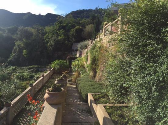 Villa Paola: giardino