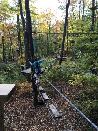 Sky High Aerial Adventure Park : Obstacle on one of the easiest courses