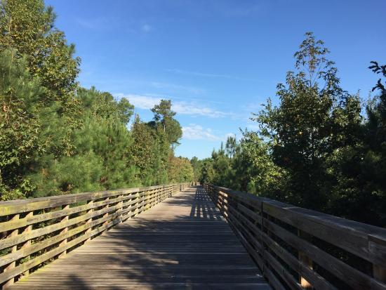 Greensprings Greenway Interpretative Trail