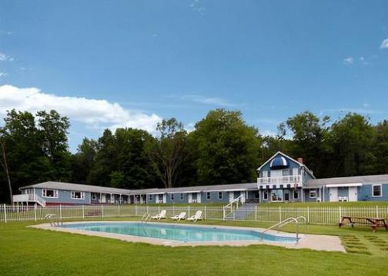 Rodeway Inn Lee: pool