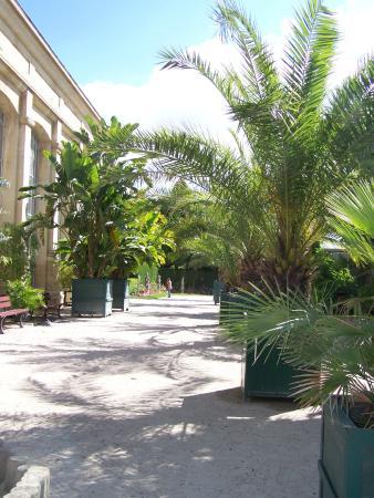 Jardin des plantes caen 2018 ce qu 39 il faut savoir pour votre visite tripadvisor - Le jardin des plantes caen ...