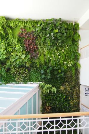 Begrunte Wand Bild Von Amare Beach Hotel Marbella