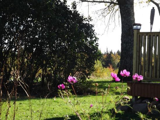 Malden, Canadá: Garden