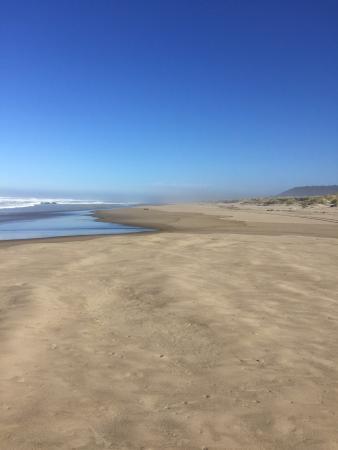 Oregon Dunes National Recreation Area: photo1.jpg