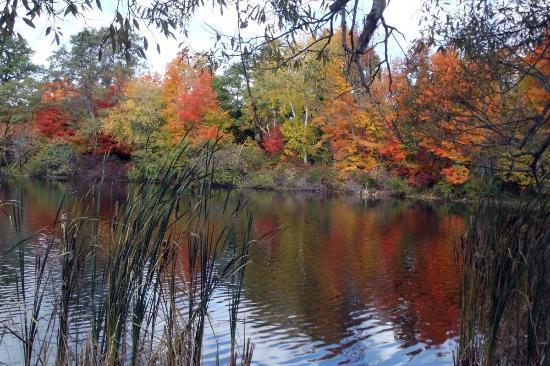 Chatham, NY: Peace