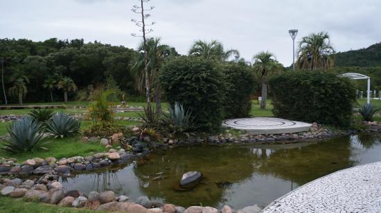 Bosque Amoraeville
