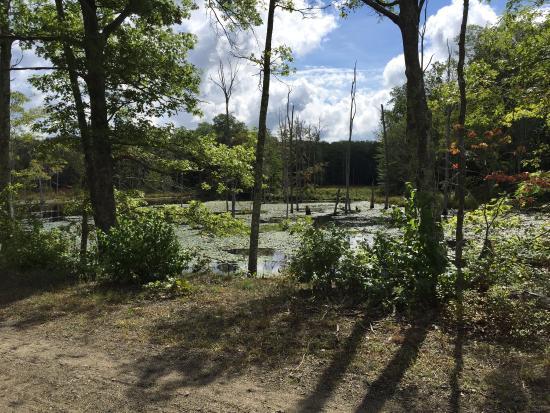 Airline State Park Trail: September 2015