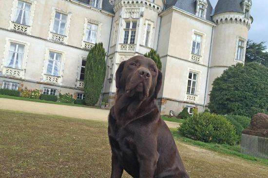 Château des Tesnières : The owner!!