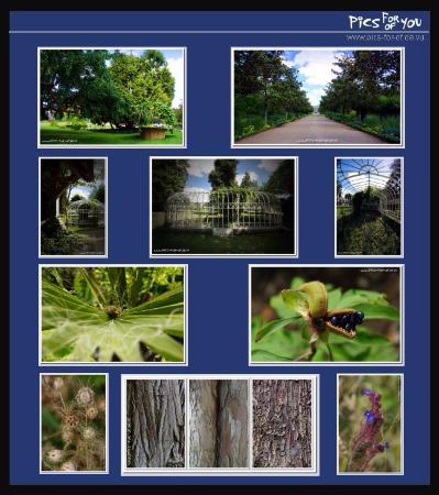 jardin botanique de tours jardin botanique tours - Jardin Botanique De Tours