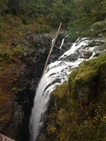 Nanaimo, كندا: falls