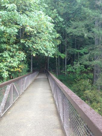 Nanaimo, كندا: The bridge across that leads to the other Falls