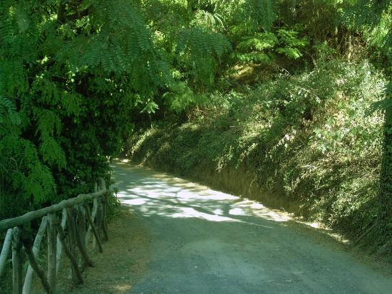Villa Baciolo: L'ingresso