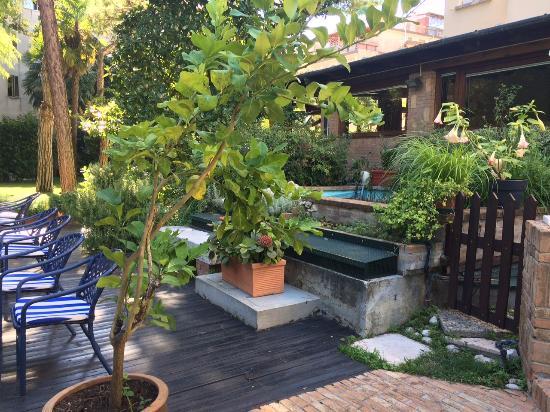 Hotel Villa Mabapa: Backyard
