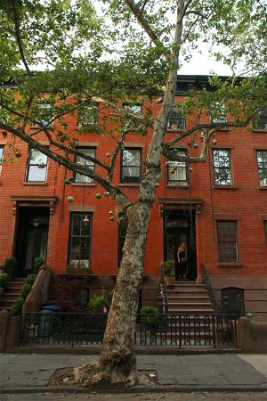 Boerum Hill Guesthouse