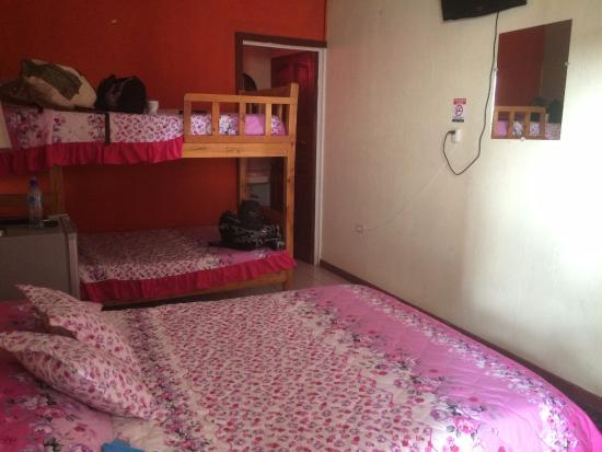 Hotel Sloth Backpackers Bed & Breakfast: Room