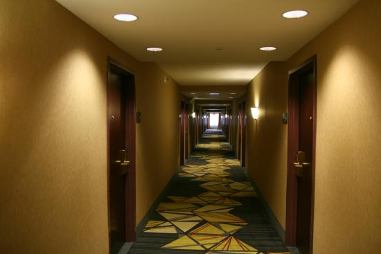 Hampton Inn & Suites Poughkeepsie: Hotel hallway