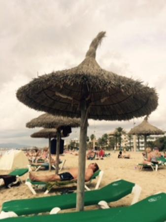 Hotel Palma Playa Los Cactus : En la playa de Palma de Mallorca