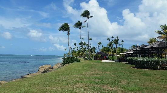 Melia Coco Beach Gran Golf Resort Puerto Rico