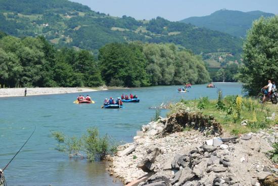 Regatta of the river Lim, near...