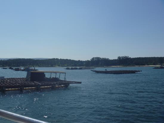 Galicia Incoming Services: Tour imperdible!!!