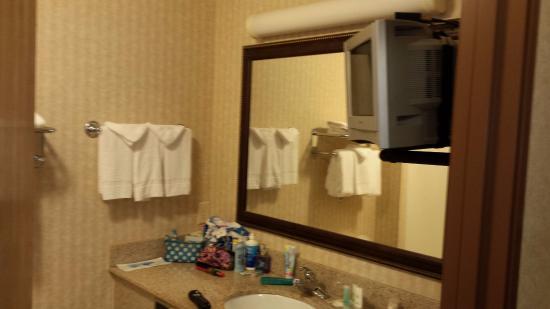 Comfort Inn & Suites Madison North: bathroom with tv