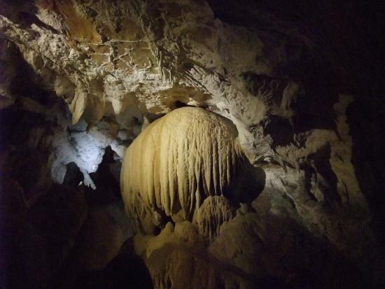 Cuevas de Urdax: CUEVA