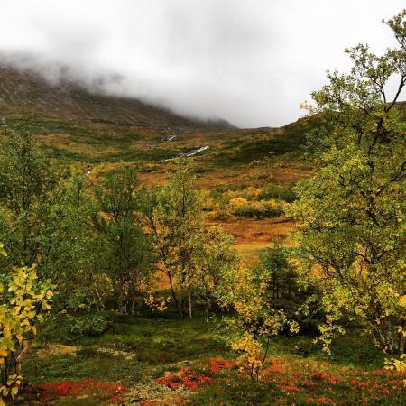 Mosjoen, Noruega: Naturlige Helgeland