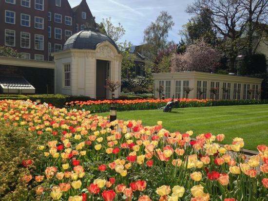 waldorf astoria amsterdam hotel gardens - Amsterdam Garden
