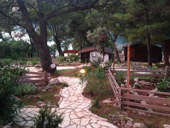 Ribarsko Selo: Secret gardens :)