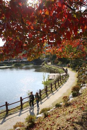 Icheon World Ceramics Center: 관고저수지 단풍