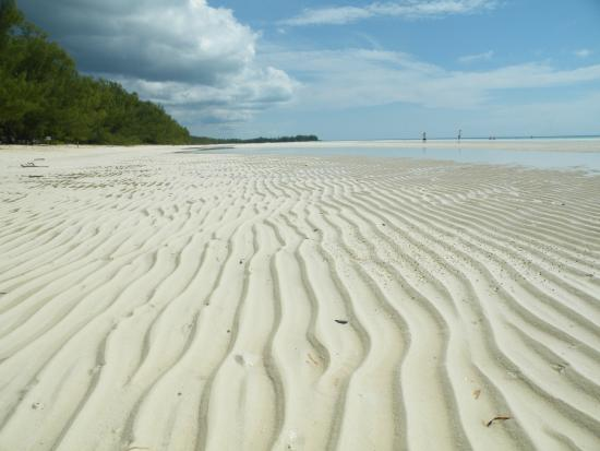 Bahamas Interisland Ecotours Day Tours Gold Rock Beach Welcome Mat