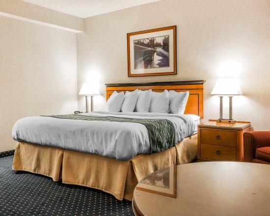 Quality Inn Auburn Hills: Guest Room