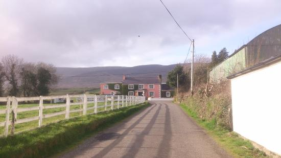 Murphy's Farmhouse: Leading to the house, plenty of parking