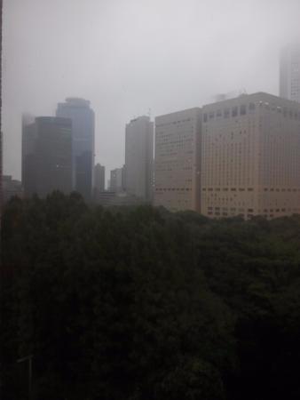 Shinjuku New City Hotel: Cloudy day in Tokyo