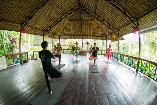 Shankari's Bali Retreat: Yoga Hall