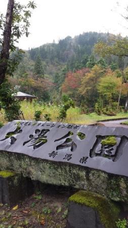 Oyu Park