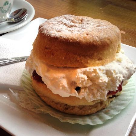 The Arrochar Tea Room : A cream scone