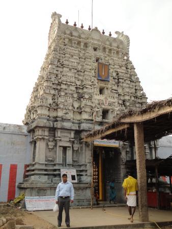 Mahabalipuram Picture Of Hotel Saravana Bhavan Restaurant Chennai Madras Tripadvisor