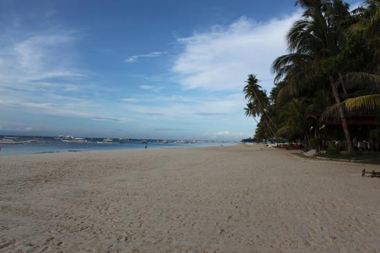 Alona Tropical Beach Resort: Beach to the west