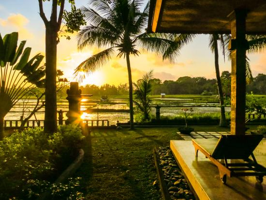 Photo of Green Field Hotel and Bungalows Ubud