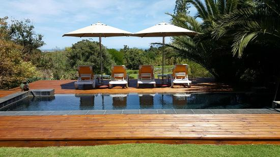 Chelaya Country Lodge: The new pool deck