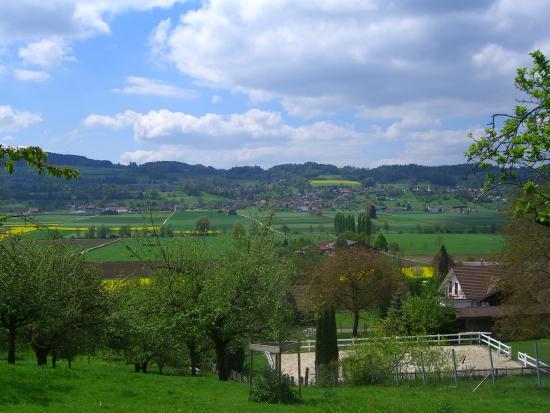 Triengen Countryside