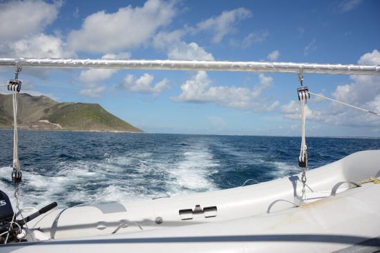 Симпсон-Бей, Сен-Мартен – Синт-Мартен: View from the back of the boat