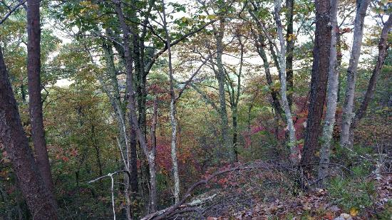 Millboro, VA: George Washington & Jefferson National Forests