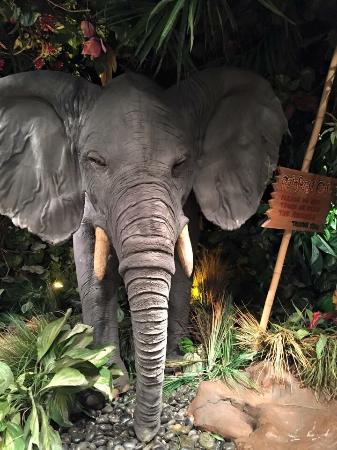 Rain Forest Cafe at MGM Grand Hotel and Casino: photo6.jpg