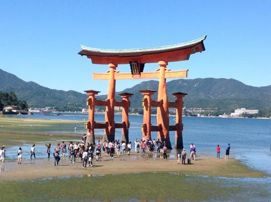 viuzza sullisola - Foto di Miyajima, Hatsukaichi - TripAdvisor