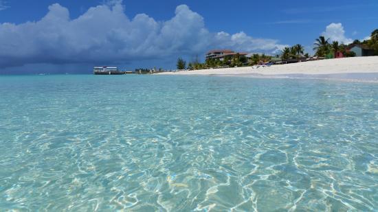 Club Med Turkoise, Turks & Caicos : La spiaggia meravigliosa di fronte al Club Med